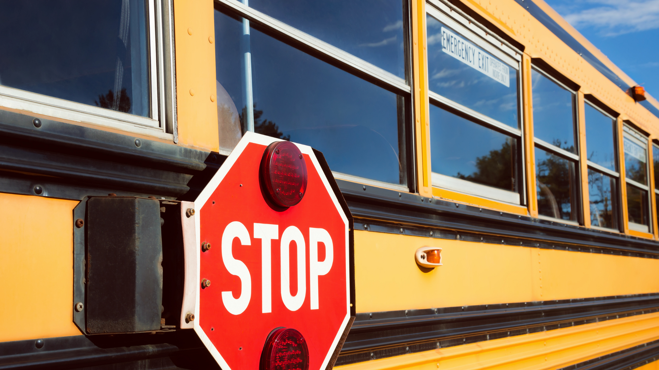 Police are investigating a motor vehicle collision involving a school bus that occurred in Bedford   haligonia.ca